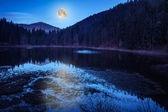 Autumn Mountain lake in coniferous forest — ストック写真