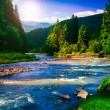 Mountain river in evening — Stock Photo