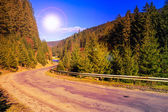 Mountain road near the forest — Stok fotoğraf
