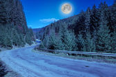 Mountain road near the forest — Stock Photo