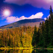 Pine forest and lake near the mountain — Stockfoto