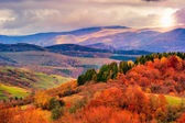 Autumn hillside with Colorful foliage trees near valley — Stock Photo