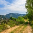Mountain road near the forest with cloudy sky — Stock Photo