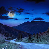 Mountain road near the coniferous forest with cloudy moon sky — Stock Photo