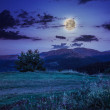 Moonlight beams in highland — Stock Photo #37459321