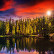 Mountain lake in coniferous forest on red sunset — Stock Photo #37710327