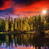 Mountain lake in coniferous forest on red sunset — 图库照片