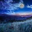 Midnight moon in highland — Stock Photo #37840271