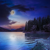 Autumn Mountain lake in coniferous forest at night — Photo