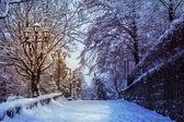 Camino con linternas en la nieve durante la noche — Foto de Stock