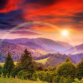 Rainbow in coniferous forest on a steep mountain slope at sunset — Stock Photo