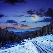 Snowy road to coniferous forest in mountains at night — Stock Photo