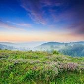 Niebla fría caliente amanecer en las montañas — Foto de Stock