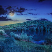Pine forest and lake near the mountain at night — Stock Photo