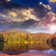 Pine forest and lake near the mountain early at sunset — Stock Photo #40629839