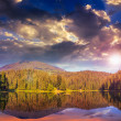 Stock Photo: Pine forest and lake near the mountain early at sunset