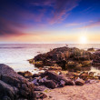 Seagulls sit on big boulders near the sea watching sunset — Stock Photo