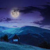 Village on hillside meadow with forest in mountain at night — Stock Photo