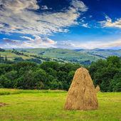 Pair of haystacks and tree at mountain — Stock Photo