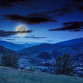 Village in mountain foot valley with forest at night — Stock Photo