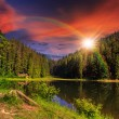 Pine forest and lake near the mountain at sunset — Stock Photo #42739231