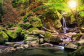Beautiful waterfall comes out of a huge rock in the forest — Stock Photo