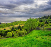 Fence on hillside meadow in mountain on dull day — Stock Photo
