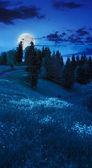 松树谷在山坡上,在晚上山区附近 — 图库照片