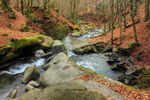 Forest river with stones and moss — Stock Photo