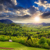 Meadow on  hillside meadow in mountain at sunset — Stock Photo