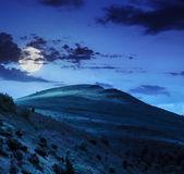Jehličnatý les na horském svahu v noci — Stock fotografie