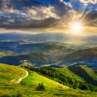 Mountain slope with forest in summer at sunset — Stock Photo #49024241