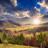 Village on hillside meadow with forest in mountain at sunset — Stockfoto
