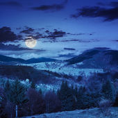 Village on hillside meadow with forest in mountain at night — Foto Stock