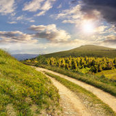 Road on a hillside near mountain peak at sunset — Stock Photo