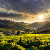 Field near home at sunset — Stock Photo