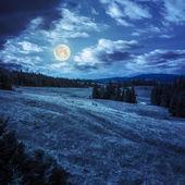 松树谷山边坡在晚上附近 — 图库照片