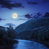 Mountain river near the forest at night — Foto Stock