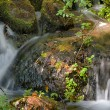Water falls over rocks in Autumn — Stock Photo #12648242