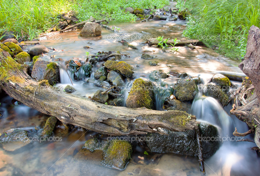 Water falls over moss covered rocks and logs — Stock Photo #12648351
