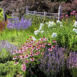 Stock Photo: Annual Garden and MinnesotLandscape Arboretum