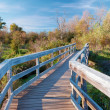 Bridge Over the Marsh — Stock Photo