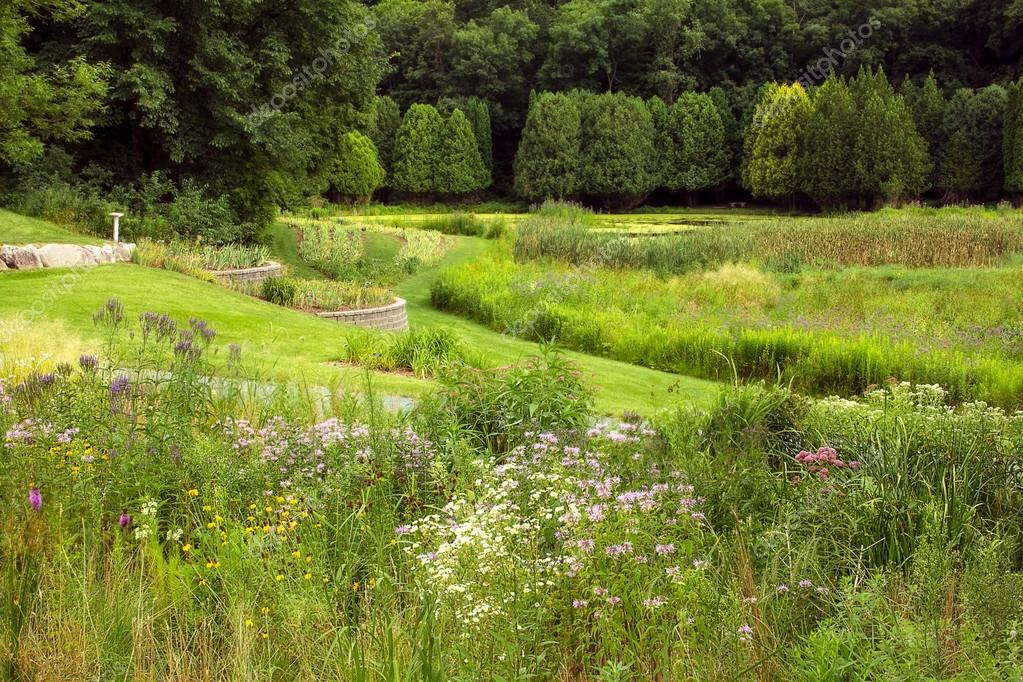 A Verdant Summer Garden with Wildflowers and Water — Stok fotoğraf #13478301
