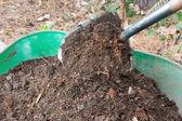 Shovel Pours Compost into Wheelbarrow — Stock Photo