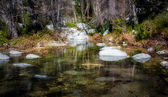 Placid Waters at Chantry Flats — Stock Photo