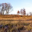 Late Afternoon on the Midwest Prairie in November — Stock Photo