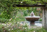 Jardín inglés después de la lluvia — Foto de Stock