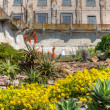 Prison Gardens at Alcatraz Island Prison - Stock Photo