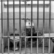 Stock Photo: Prison Cell at Alcatraz Island Cell Block A