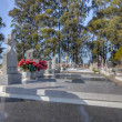 Lines of Grave Markers at San Carlos Cemetery — Stock Photo